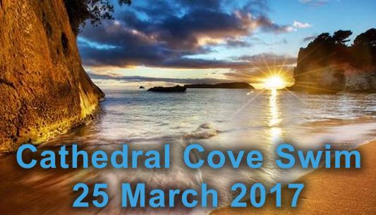 Cathedral Cove Swim 2017